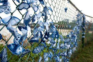 tasha-lewis-cyanotype-butterfly-installation-2-edit