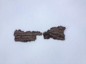 bark pair